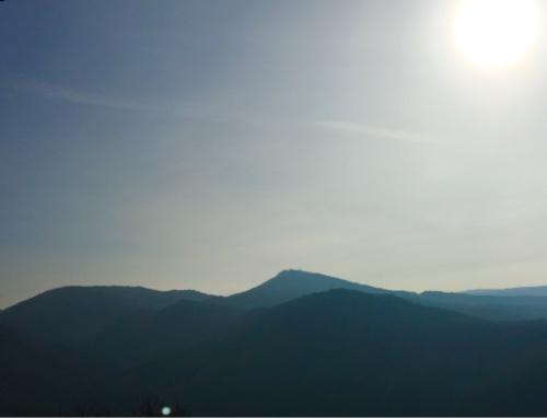 Blick zum Siebengebirge