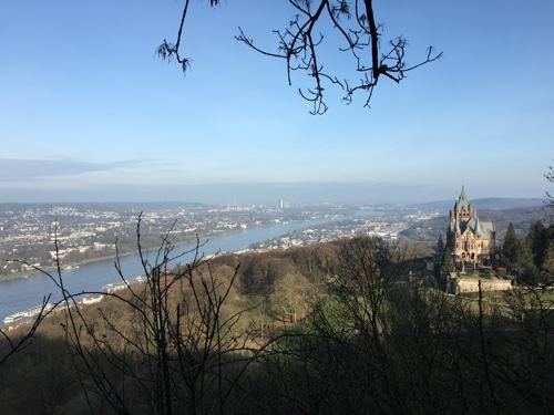 Schloss Drachenfels. Nicht zu verwechseln mit der weiter oben gelegenen Burgruine